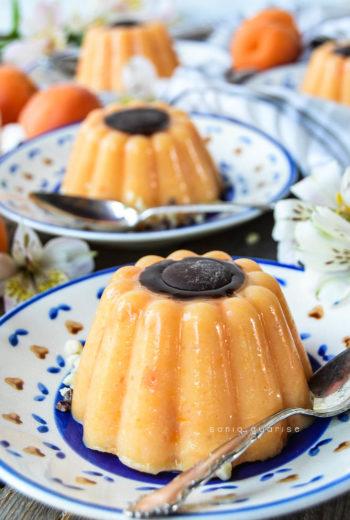 Gelatine di albicocche al cioccolato